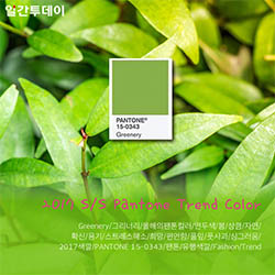 2017 S/S Pantone Trend Color 'Greenery'